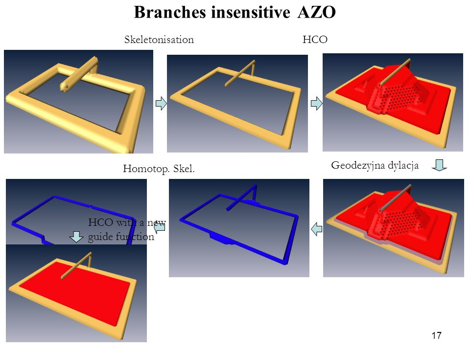 17 Branches insensitive AZO HCO Homotop. Skel. HCO with a new guide function Geodezyjna dylacja Skeletonisation