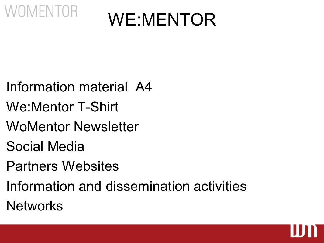 WE:MENTOR Information material A4 We:Mentor T-Shirt WoMentor Newsletter Social Media Partners Websites Information and dissemination activities Networks