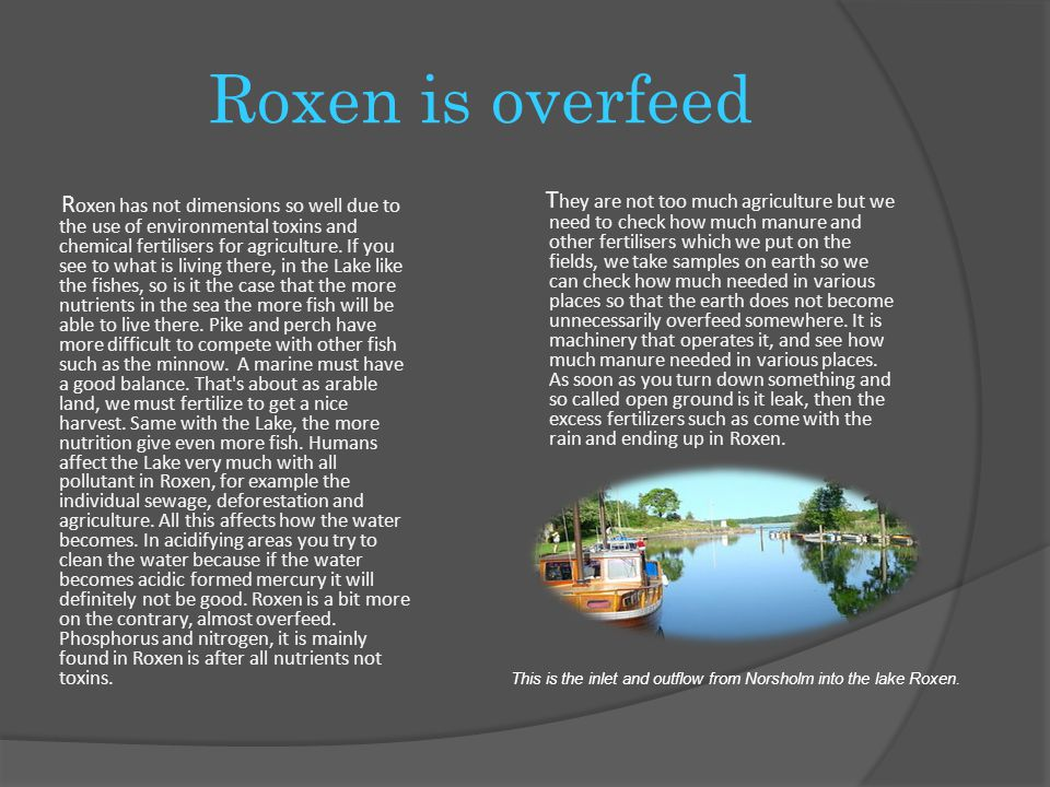 Pollutants in Roxen We humans affect the Lake very much with all pollutions to the lake Roxen, for example, individual sewage, deforestation and agriculture.