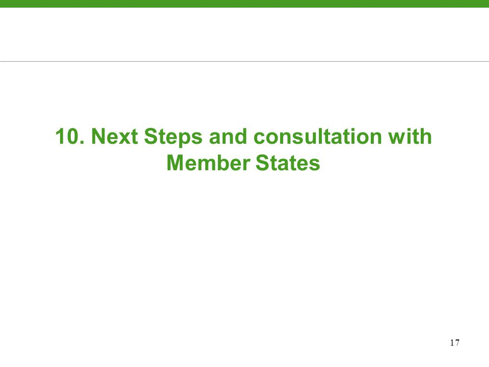 17 10. Next Steps and consultation with Member States