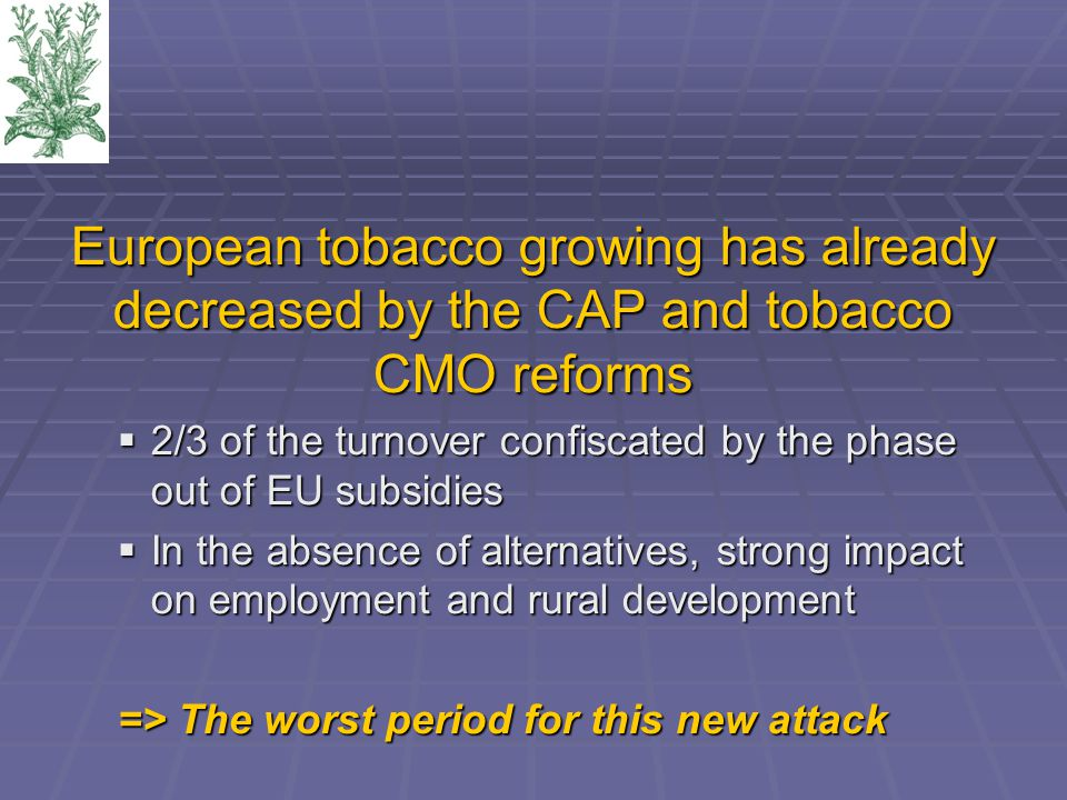 European tobacco growing has already decreased by the CAP and tobacco CMO reforms  2/3 of the turnover confiscated by the phase out of EU subsidies  In the absence of alternatives, strong impact on employment and rural development => The worst period for this new attack