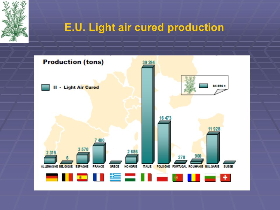 E.U. Light air cured production