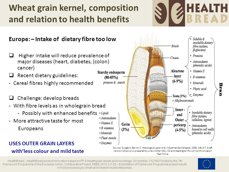 Wheat grain kernel, composition and relation to health benefits HealthBread – HealthBread product innovation based on FP 6 Healthgrain results and kno