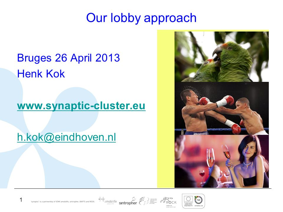 1 Our lobby approach Bruges 26 April 2013 Henk Kok www.synaptic-cluster.eu h.kok@eindhoven.nl