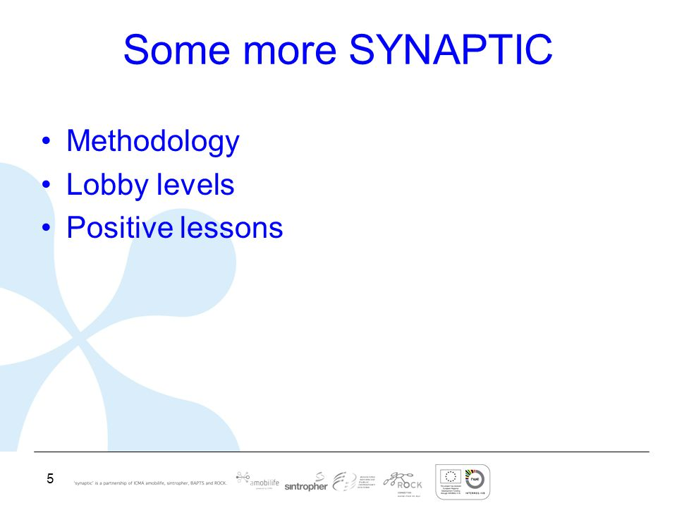 5 Some more SYNAPTIC Methodology Lobby levels Positive lessons
