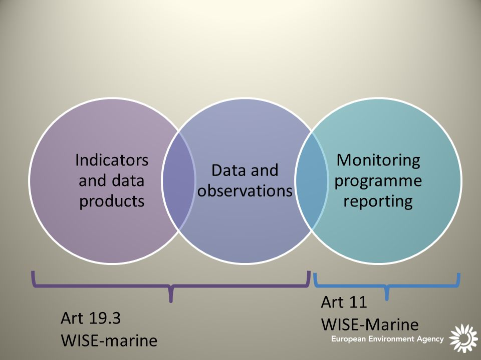 DIKE TSG1 objectives To obtain a better understanding of how we can work together to assemble an adequate information system: – How are things working today – What came out of the 2012 art 19.3 reporting – What can we take from INSPIRE.