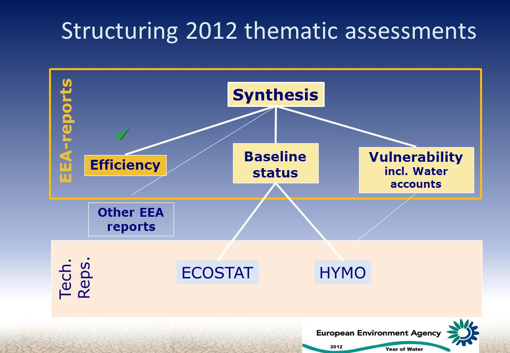 Tech. Reps. Structuring 2012 thematic assessments 5 Efficiency Baseline status Vulnerability incl.
