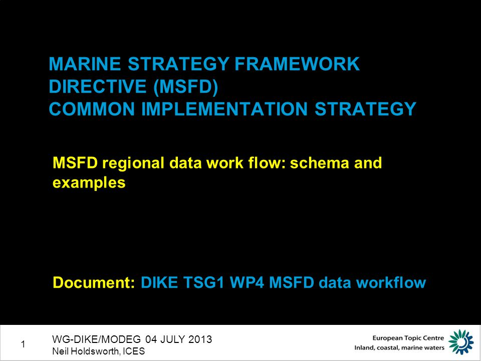 1 MARINE STRATEGY FRAMEWORK DIRECTIVE (MSFD) COMMON IMPLEMENTATION STRATEGY MSFD regional data work flow: schema and examples Document: DIKE TSG1 WP4
