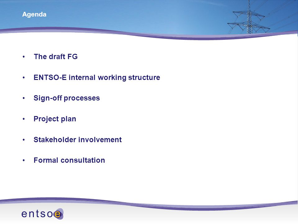 Agenda The draft FG ENTSO-E internal working structure Sign-off processes Project plan Stakeholder involvement Formal consultation