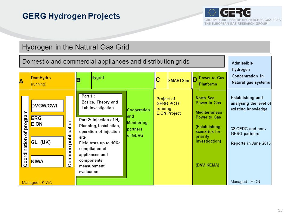 13 DomHydro (running) A GERG Hydrogen Projects Hydrogen in the Natural Gas Grid Domestic and commercial appliances and distribution grids Establishing
