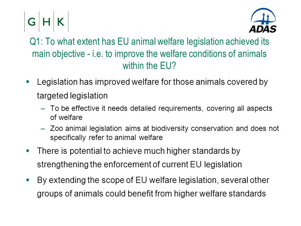 Q1: To what extent has EU animal welfare legislation achieved its main objective - i.e. to improve the welfare conditions of animals within the EU? 