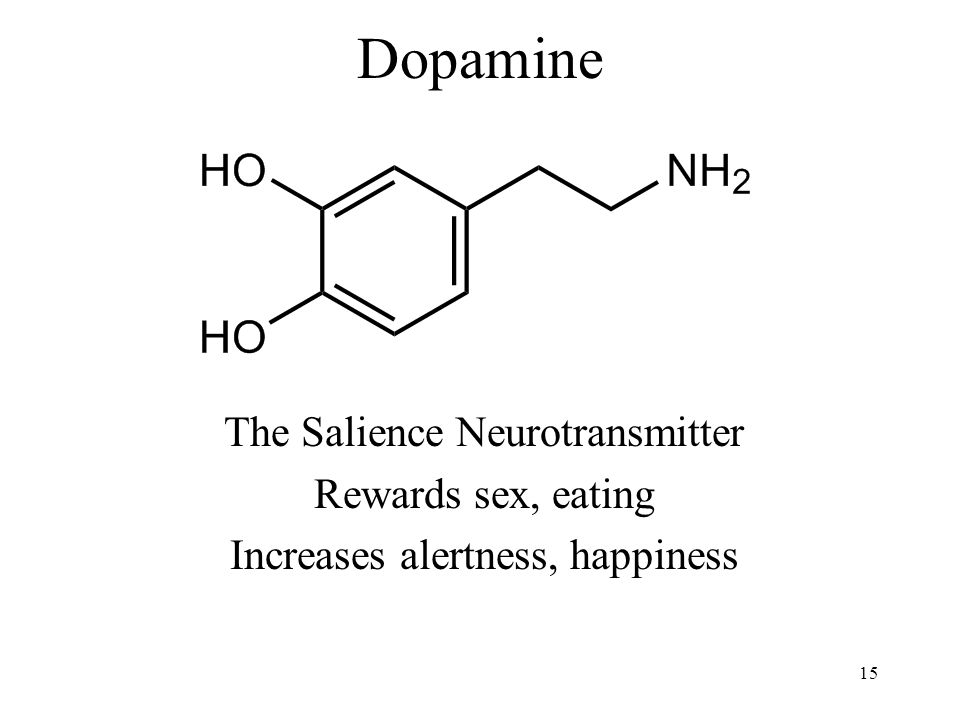 Dopamine The Salience Neurotransmitter Rewards sex, eating Increases alertness, happiness 15