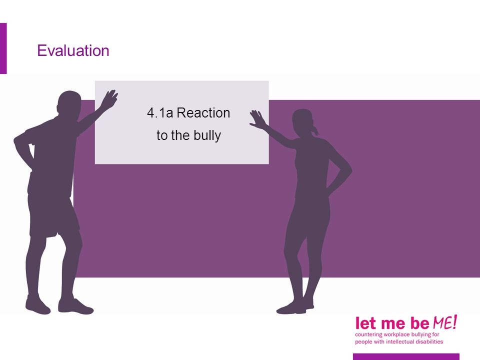 Evaluation 4.1a Reaction to the bully