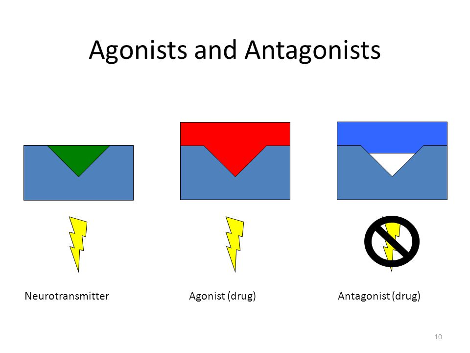 Agonists and Antagonists NeurotransmitterAgonist (drug)Antagonist (drug) 10