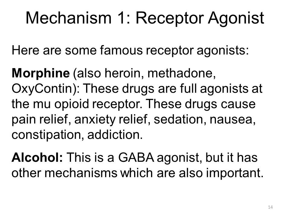 Mechanism 1: Receptor Agonist Here are some famous receptor agonists: Morphine (also heroin, methadone, OxyContin): These drugs are full agonists at t