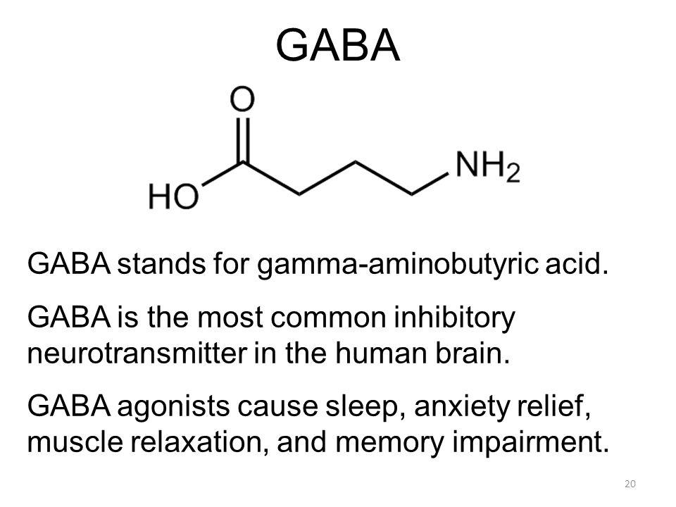 GABA GABA stands for gamma-aminobutyric acid. GABA is the most common inhibitory neurotransmitter in the human brain. GABA agonists cause sleep, anxie