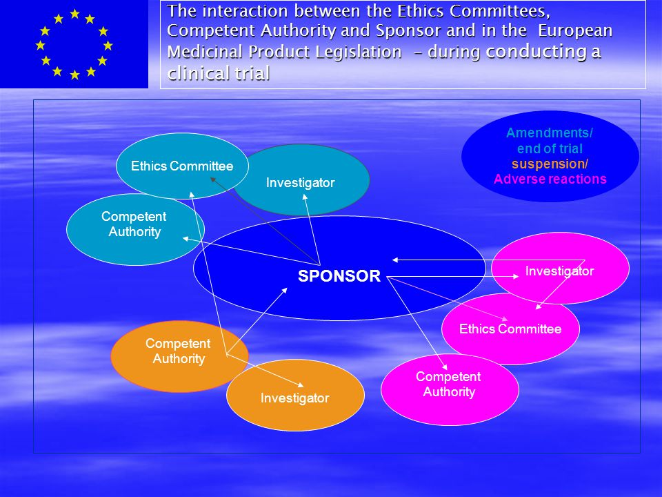 The interaction between the Ethics Committees, Competent Authority and Sponsor and in the European Medicinal Product Legislation - during conducting a clinical trial SPONSOR Ethics Committee Investigator Amendments/ end of trial suspension/ Adverse reactions Competent Authority Competent Authority Investigator Ethics Committee Competent Authority Investigator