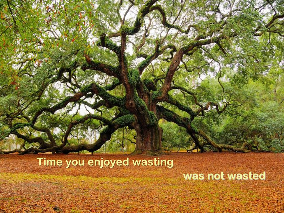 Time you enjoyed wasting was not wasted