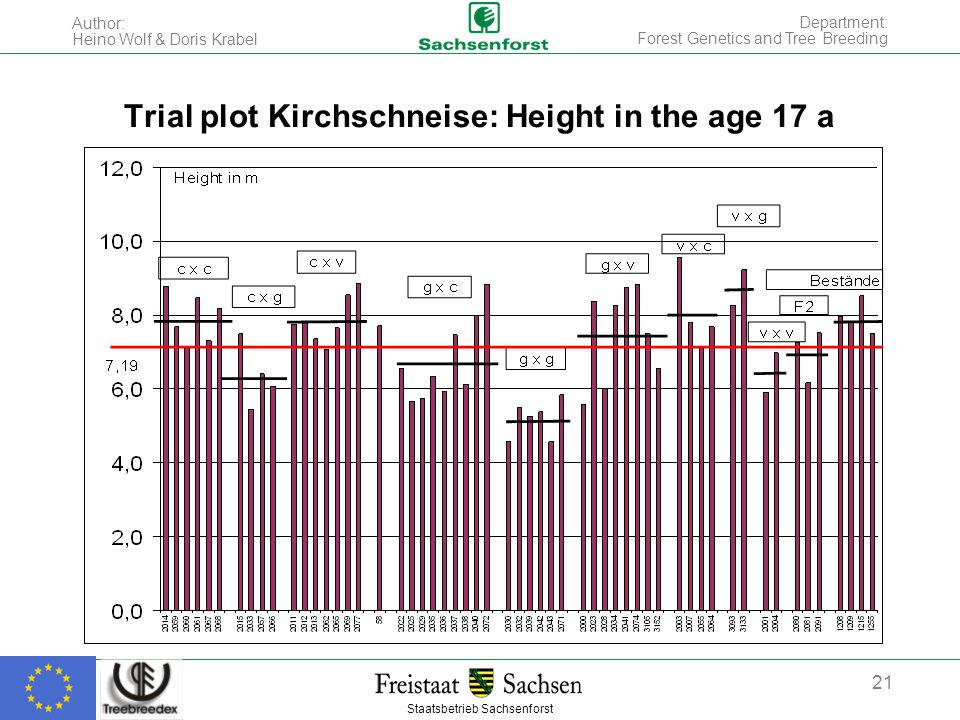 Staatsbetrieb Sachsenforst Author: Heino Wolf & Doris Krabel 21 Department: Forest Genetics and Tree Breeding Trial plot Kirchschneise: Height in the age 17 a