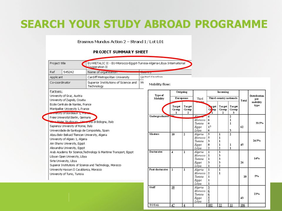 SEARCH YOUR STUDY ABROAD PROGRAMME