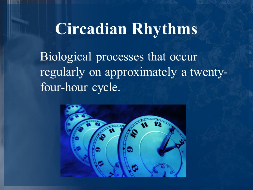 Circadian Rhythms Biological processes that occur regularly on approximately a twenty- four-hour cycle.