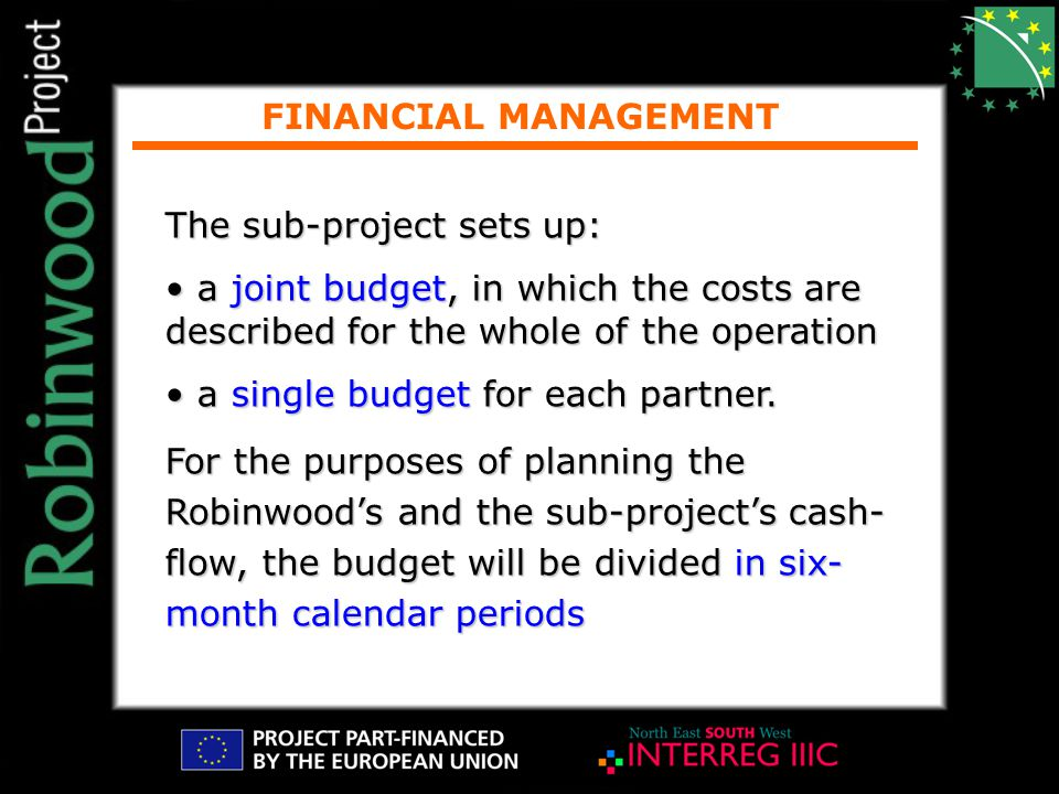 FINANCIAL MANAGEMENT The sub-project sets up: a joint budget, in which the costs are described for the whole of the operation a joint budget, in which the costs are described for the whole of the operation a single budget for each partner.