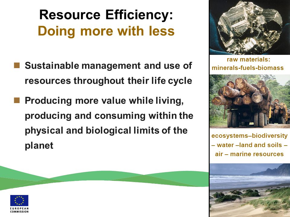 raw materials: minerals-fuels-biomass ecosystems–biodiversity – water –land and soils – air – marine resources Resource Efficiency: Doing more with le