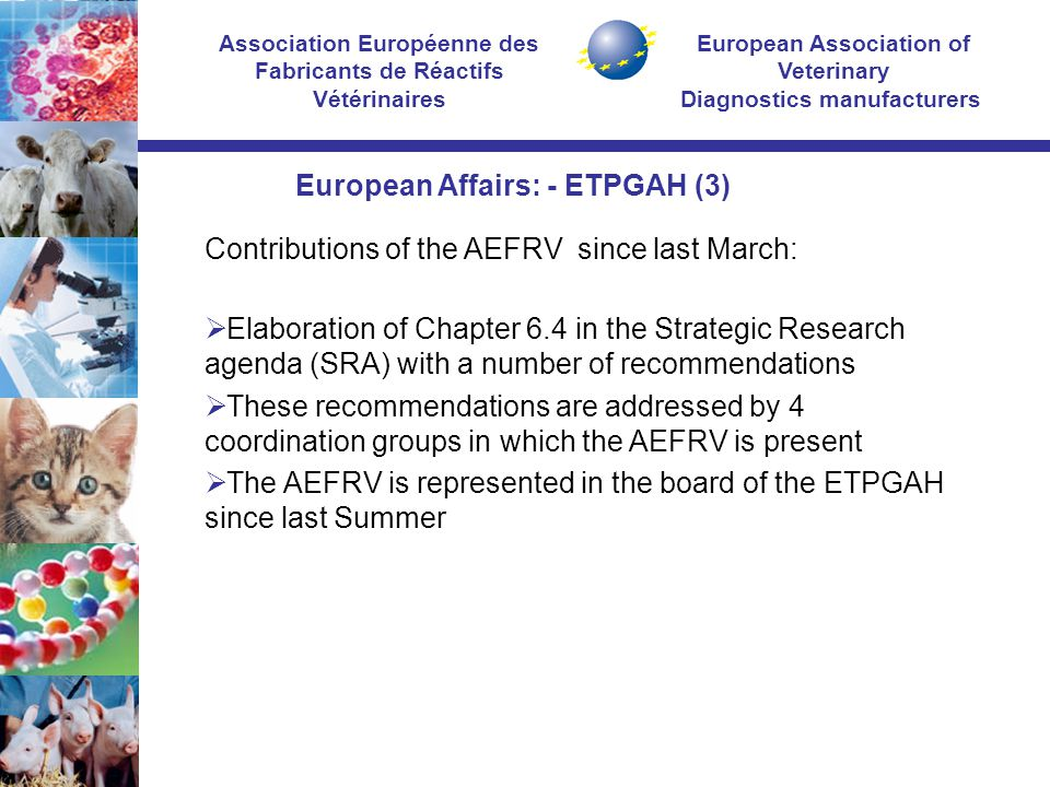 European Association of Veterinary Diagnostics manufacturers Association Européenne des Fabricants de Réactifs Vétérinaires Contributions of the AEFRV since last March:  Elaboration of Chapter 6.4 in the Strategic Research agenda (SRA) with a number of recommendations  These recommendations are addressed by 4 coordination groups in which the AEFRV is present  The AEFRV is represented in the board of the ETPGAH since last Summer European Affairs: - ETPGAH (3)
