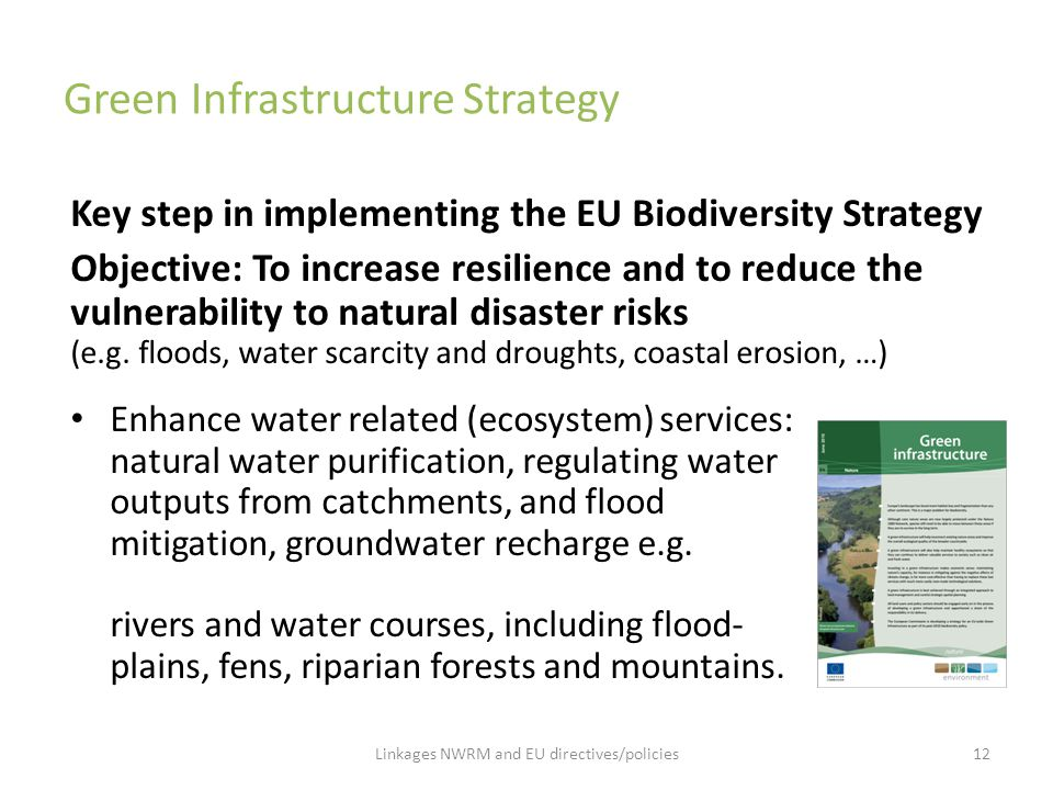 Green Infrastructure Strategy Key step in implementing the EU Biodiversity Strategy Objective: To increase resilience and to reduce the vulnerability