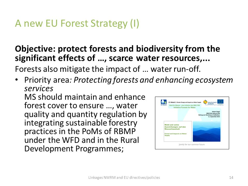 A new EU Forest Strategy (I) Objective: protect forests and biodiversity from the significant effects of …, scarce water resources,... Forests also mi