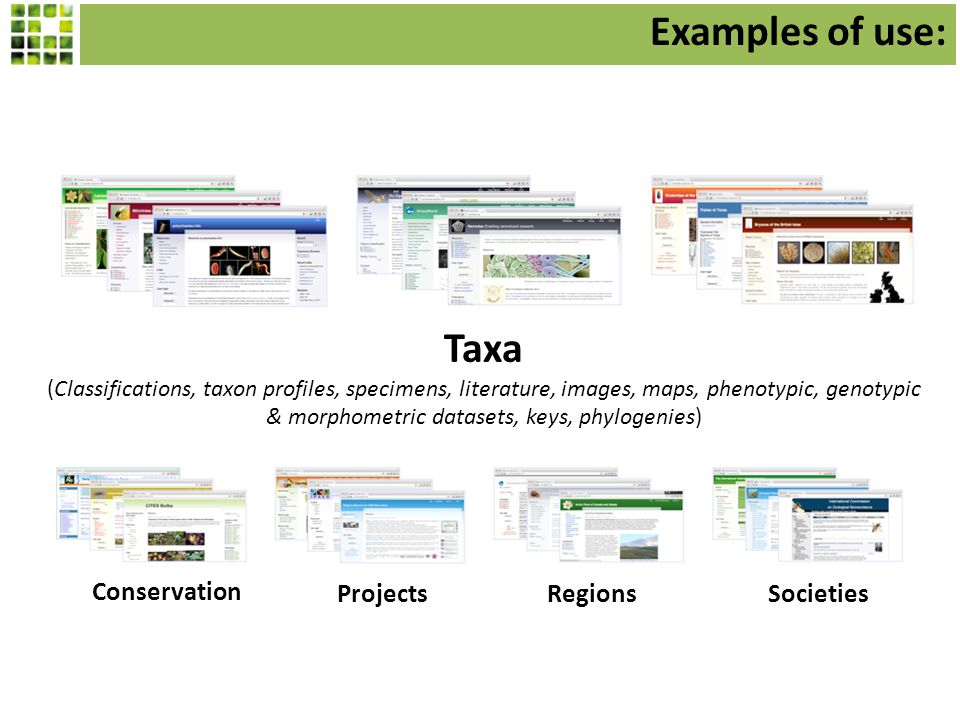 Taxa (Classifications, taxon profiles, specimens, literature, images, maps, phenotypic, genotypic & morphometric datasets, keys, phylogenies) Projects Conservation RegionsSocieties Examples of use: