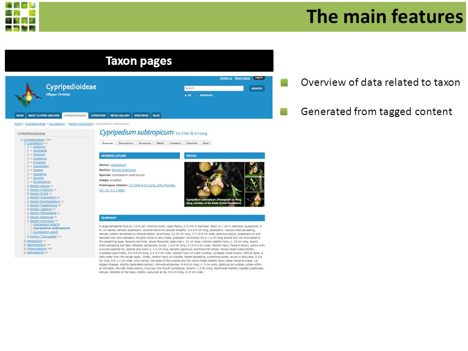 Taxon pages Overview of data related to taxon Generated from tagged content The main features