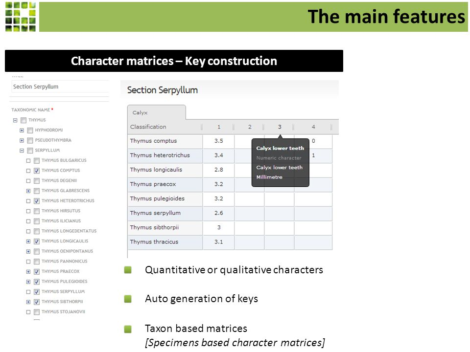 Character matrices – Key construction Quantitative or qualitative characters Auto generation of keys Taxon based matrices [Specimens based character matrices] The main features