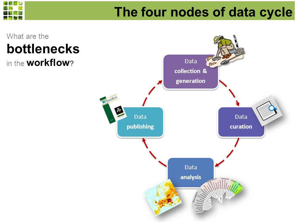 Data curation Data curation Data publishing Data publishing The four nodes of data cycle Data collection & generation Data collection & generation What are the bottlenecks in the workflow .