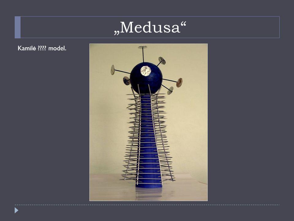"""Medusa Kamil ė model."