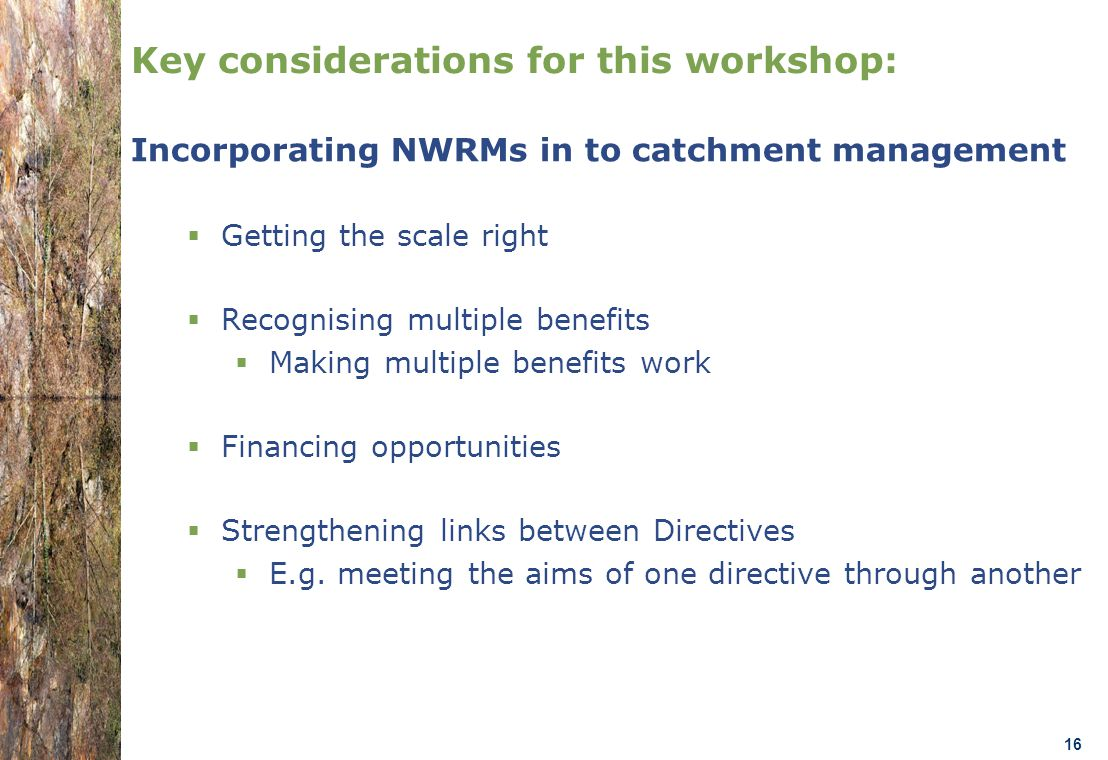 07.0330/2013/659147/SER/ENV.C1- DGENV – Brussels 22/01/14 n.amorsi@oieau.Fr 16 Key considerations for this workshop: Incorporating NWRMs in to catchment management  Getting the scale right  Recognising multiple benefits  Making multiple benefits work  Financing opportunities  Strengthening links between Directives  E.g.