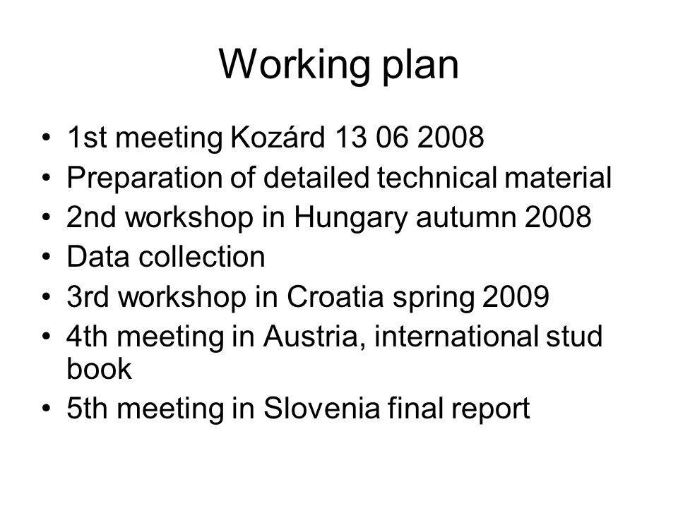 Working plan 1st meeting Kozárd 13 06 2008 Preparation of detailed technical material 2nd workshop in Hungary autumn 2008 Data collection 3rd workshop in Croatia spring 2009 4th meeting in Austria, international stud book 5th meeting in Slovenia final report