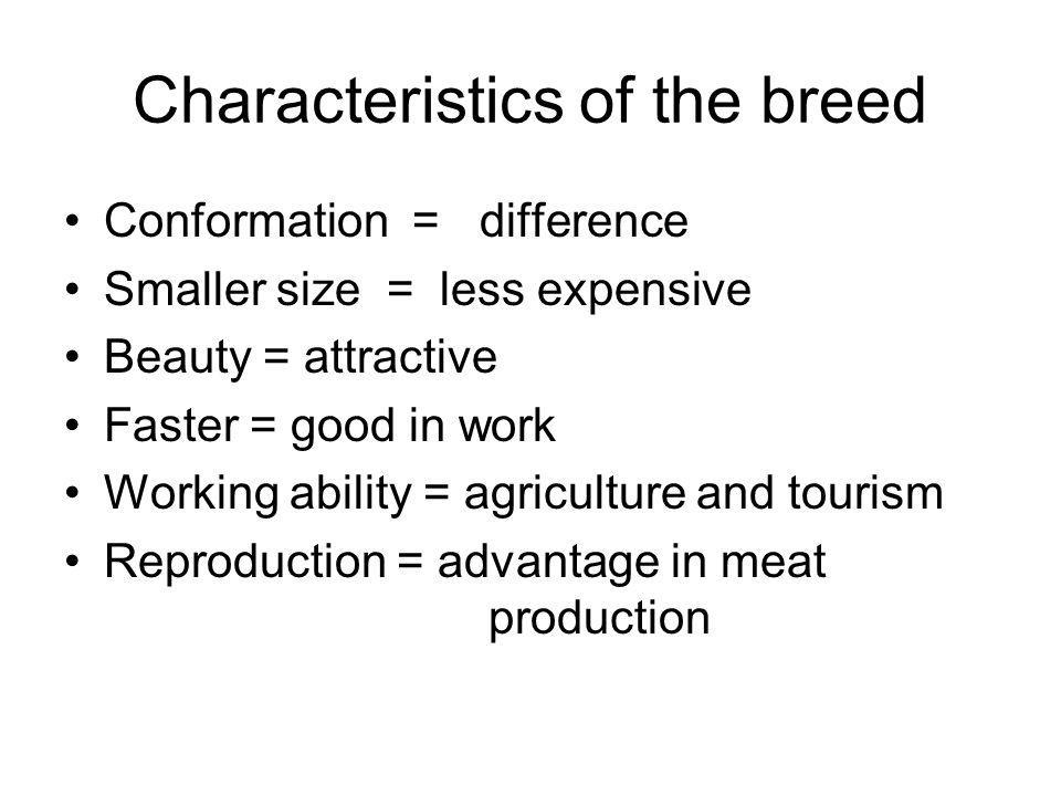 Characteristics of the breed Conformation = difference Smaller size = less expensive Beauty = attractive Faster = good in work Working ability = agriculture and tourism Reproduction = advantage in meat production