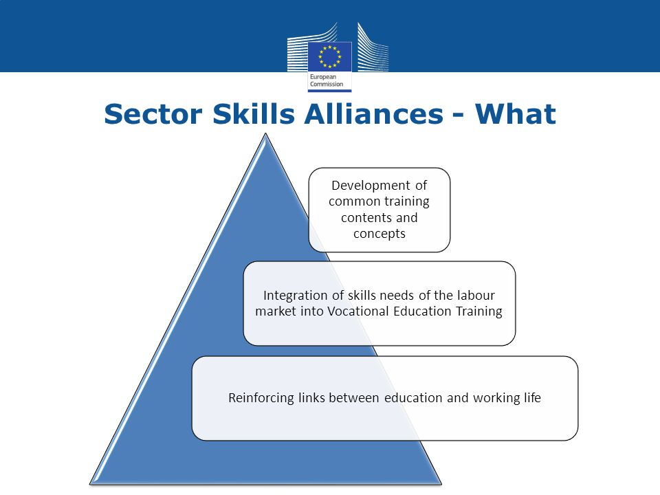 Sector Skills Alliances - What Development of common training contents and concepts Integration of skills needs of the labour market into Vocational Education Training Reinforcing links between education and working life