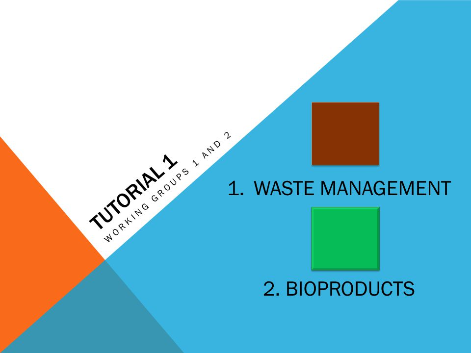 TUTORIAL 1 WORKING GROUPS 1 AND 2 1.WASTE MANAGEMENT 2. BIOPRODUCTS