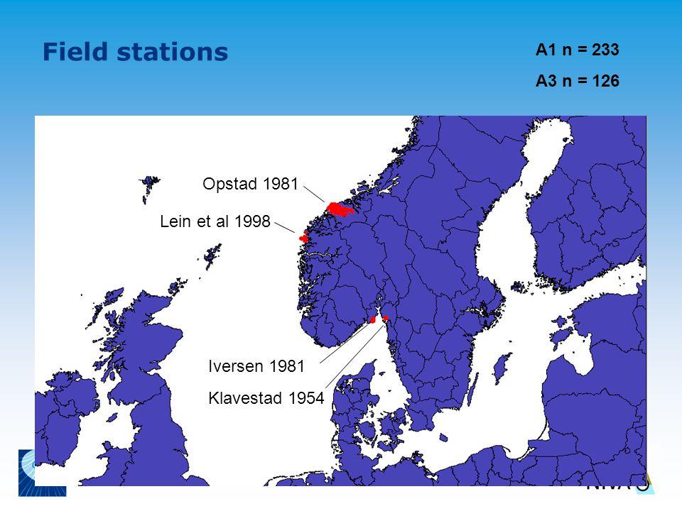 Field stations Opstad 1981 Lein et al 1998 Klavestad 1954 Iversen 1981 A1 n = 233 A3 n = 126