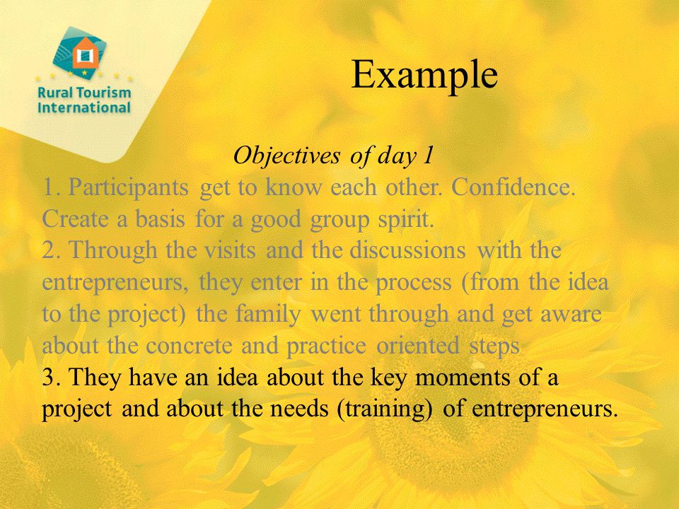 Example Objectives of day 1 1. Participants get to know each other.