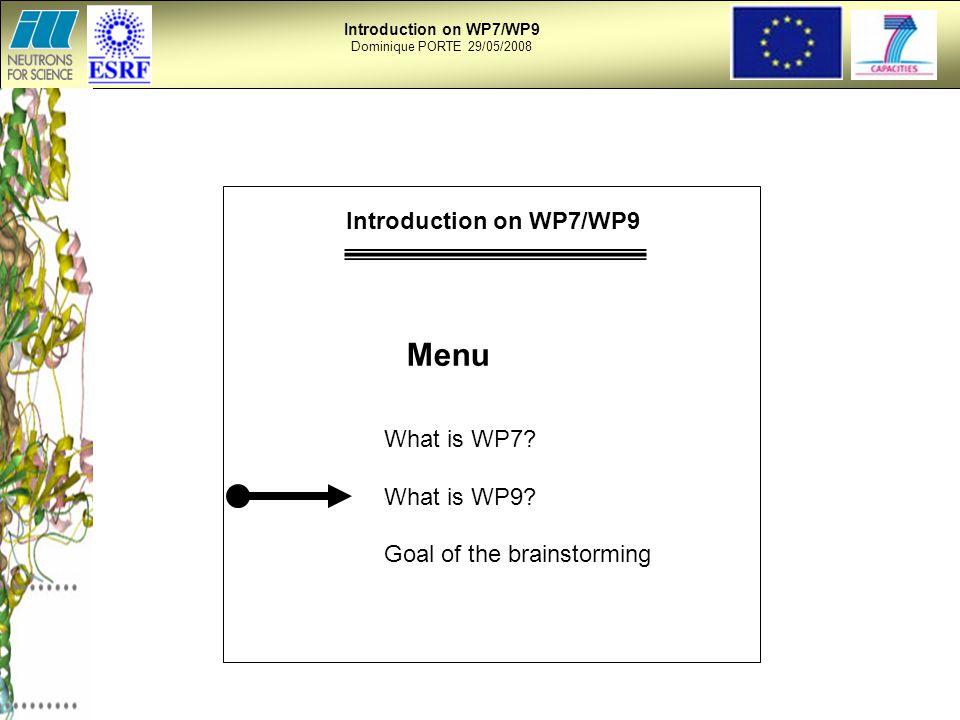 Introduction on WP7/WP9 Dominique PORTE 29/05/2008 Menu What is WP7.
