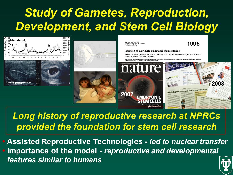 2008 Study of Gametes, Reproduction, Development, and Stem Cell Biology Menstrual cycle Early pregnancy 1995 2007 Long history of reproductive researc