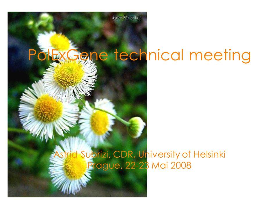 PolExGene technical meeting Astrid Subrizi, CDR, University of Helsinki Prague, 22-23 Mai 2008