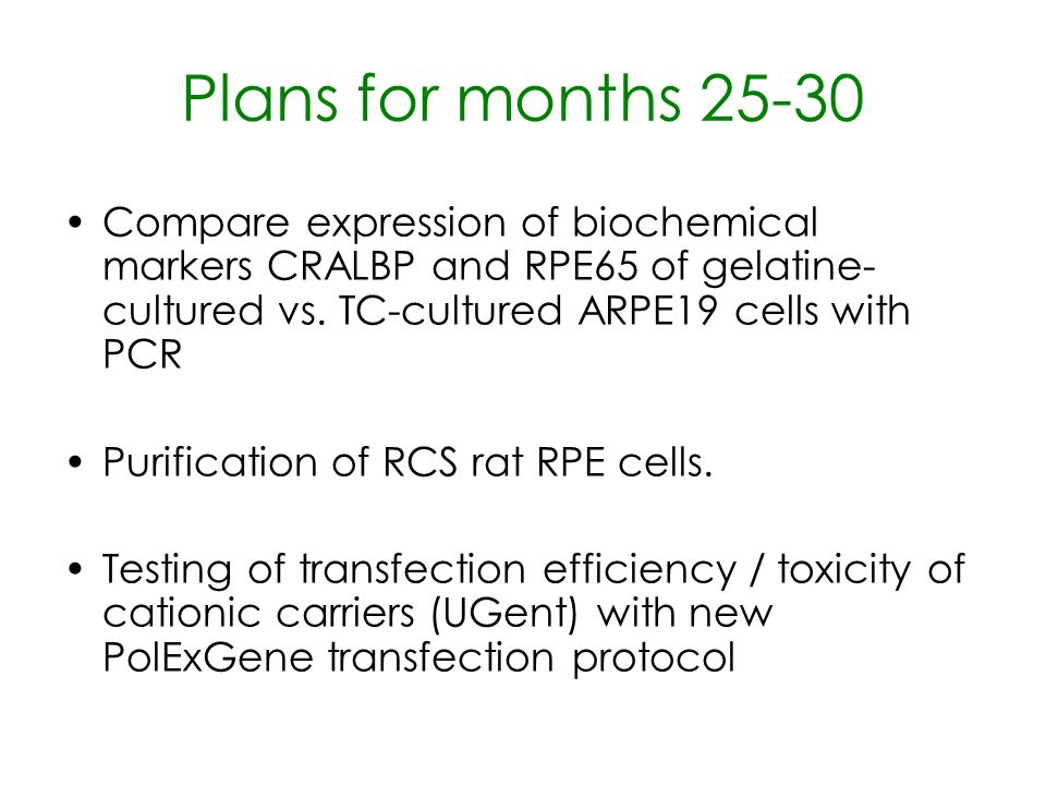 Plans for months 25-30 Compare expression of biochemical markers CRALBP and RPE65 of gelatine- cultured vs. TC-cultured ARPE19 cells with PCR Purifica