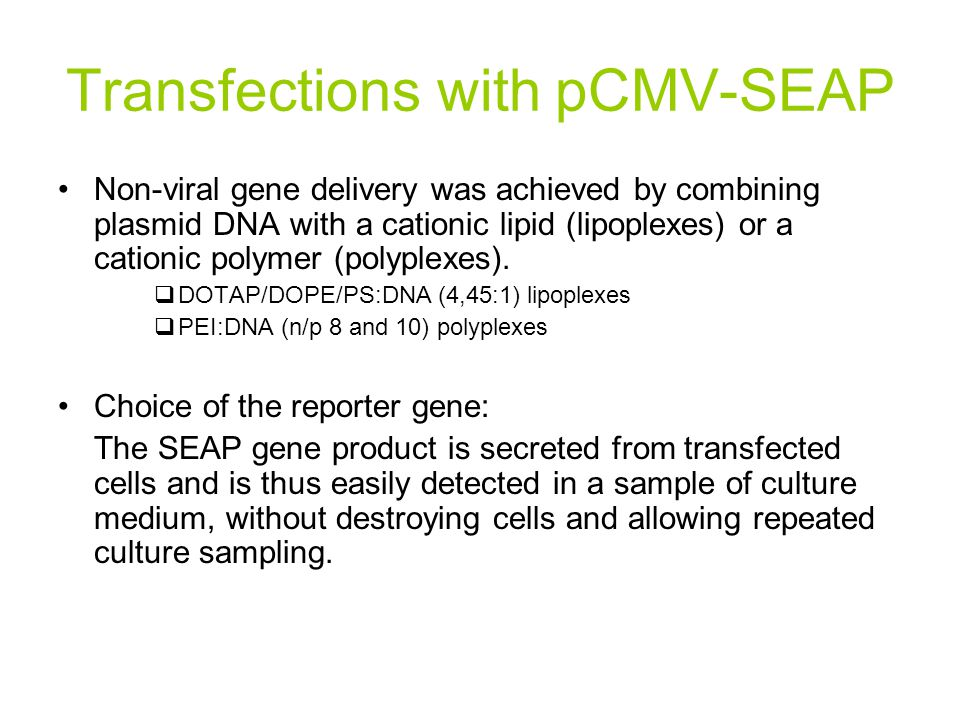 Transfections with pCMV-SEAP Non-viral gene delivery was achieved by combining plasmid DNA with a cationic lipid (lipoplexes) or a cationic polymer (p