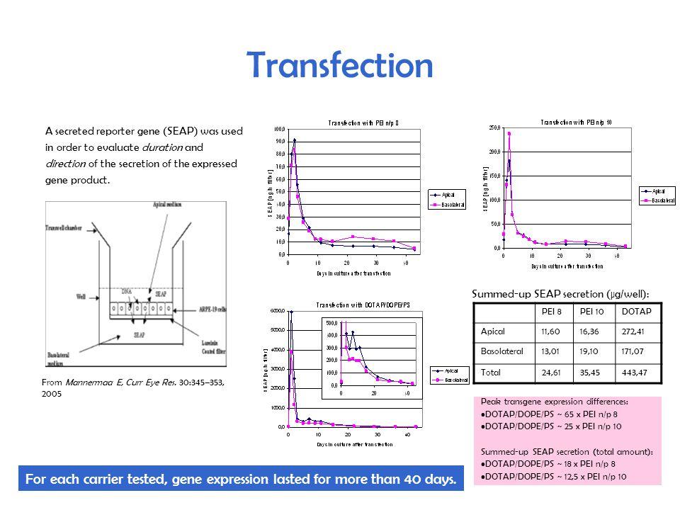Intracellular distribution of Tat Intracellular distribution of Alexa 488-Tat in dividing ARPE19 cells at 37 °C.