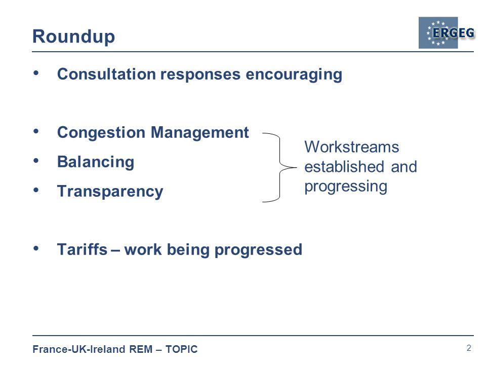 3 France-UK-Ireland REM – TOPIC Next Steps Balancing* * Actions taken Published minutes