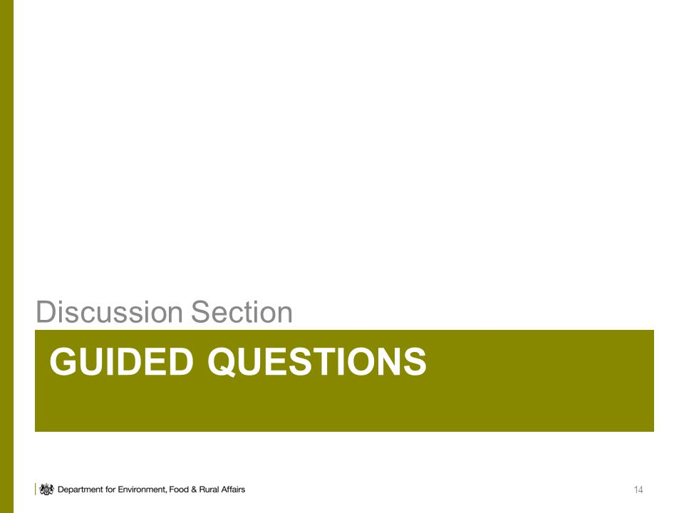 GUIDED QUESTIONS Discussion Section 14